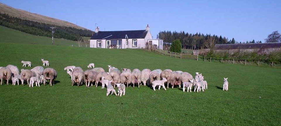 Self Catering in Peeblesshire